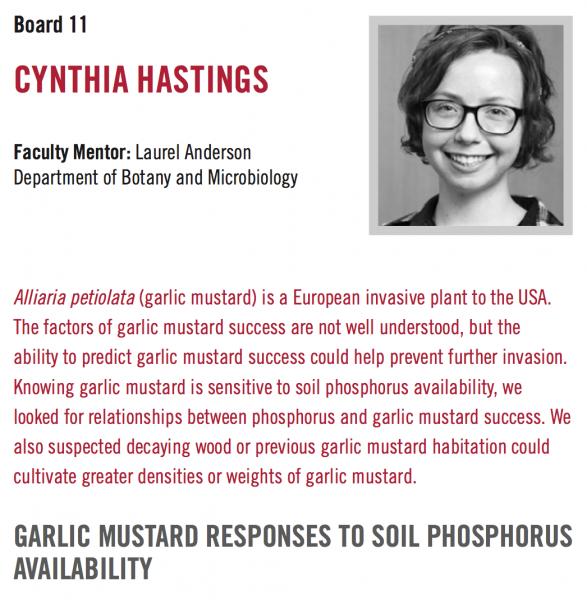 Cynthia Hasting (Anderson)